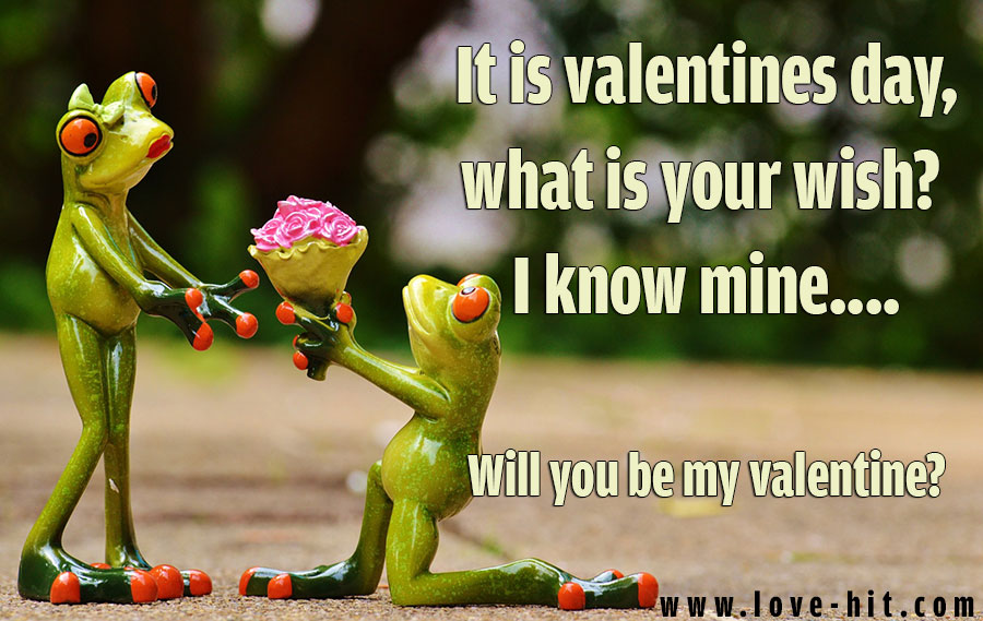 It is valentines day, what is your wish? I know mine.... Will you be my valentine?